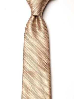 Campania Structure Dark Beige Silk Tie