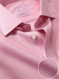 Carletti Pink Cotton Tailored Fit Formal Solid Shirt